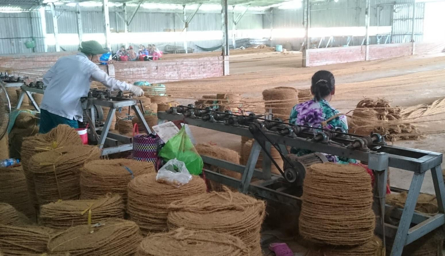 Coconut fiber processing in MoCay BenTre